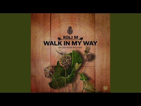 Walk in My Way (Abicah Soul Remix)