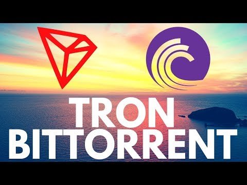 Bittorrent Token and Tron - Everything you need to know about BTT and TRX