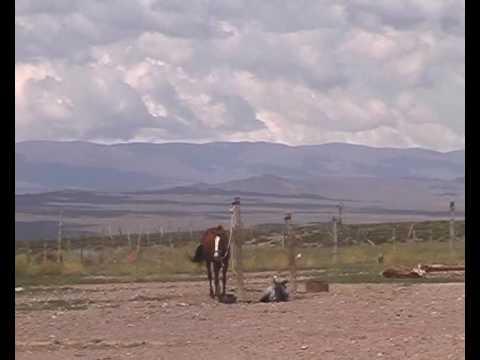 08 - Los Piyus de La Quiaca a Ushuaia en Motos Clasicas - Programa 2 / Bloque 3