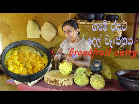 village cooking💕 breadfruit curry recipe💕del curry💕 preparing by village kitchen💕village Mom.
