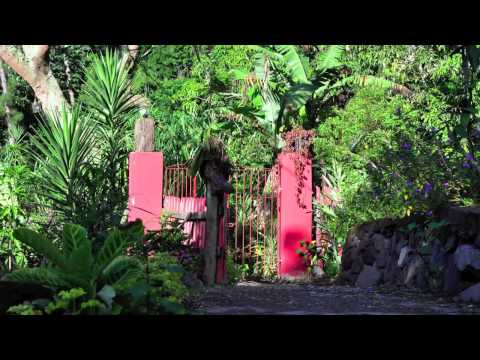 Wideo Blue Mountain Cottages - Rafjams Bed and Breakfast