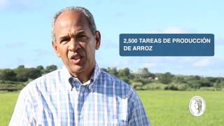 Recuento Américo Rodríguez