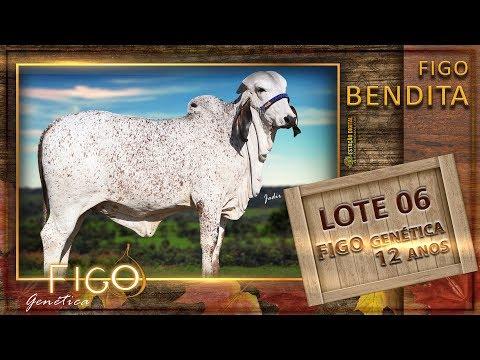 LOTE 06 - FIGO BENDITA