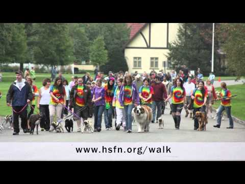 Play Walk for Whiskers 2014