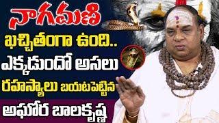 Video నాగమణి గురించి అసలు రహస్యాలు బయటపెట్టిన అఘోర  Aghora Balakrishna Revealed Secrets of Real Nagamani MP3, 3GP, MP4, WEBM, AVI, FLV April 2019