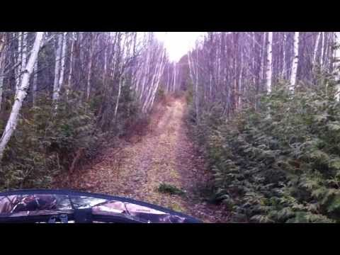 DEER HUNTING FAIL 2013