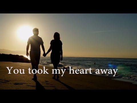 Mechael learns - You took my heart away(lyrics video)