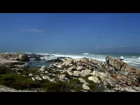 Африка ч.3 (ЮАР) (видео)