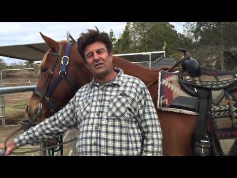 Santa Barbara Beach Horseback Rides