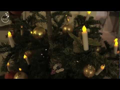 Bougies de noel pour le sapin sans fil et qui ne chauffent pas.  www.bloolands.com