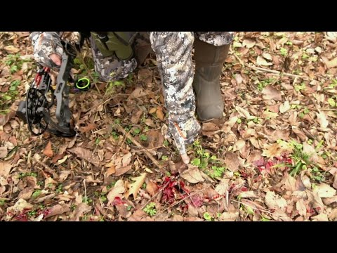 Best Blood Tracking Deer Recovery Tip