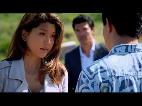 Hawaii 5-0 season 3 finale - My Immortal