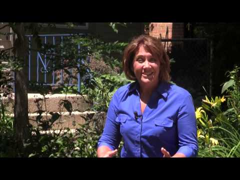 Organic Lawn Care Video