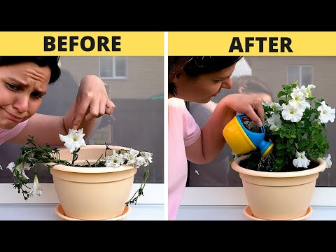 SIMPLE HACKS FOR YOUR INNER GARDENER || 5-Minute Recipes To Regrow Your Plants!