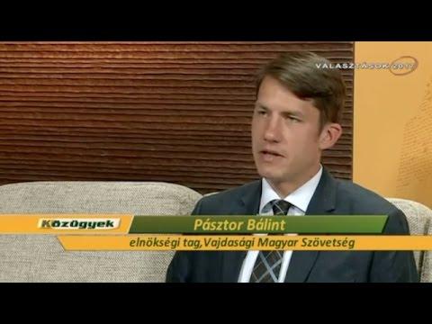 Megbízható partner az SZHP - A VMSZ Aleksander Vučić mellett-cover