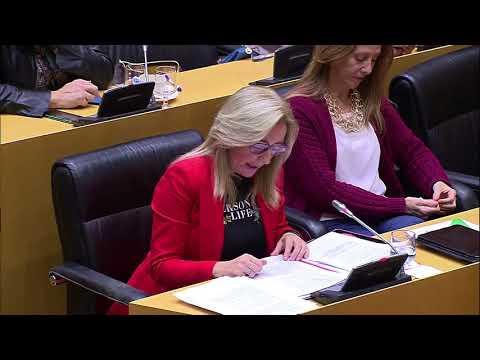 Carmen Dueñas Martinez durante la comparecencia de...