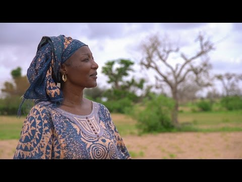 Senegal's Farmers Reap Rewards of Climate-Smart Agriculture