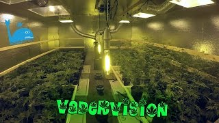 This Grow Op is now Fully Operational! by VaderVision
