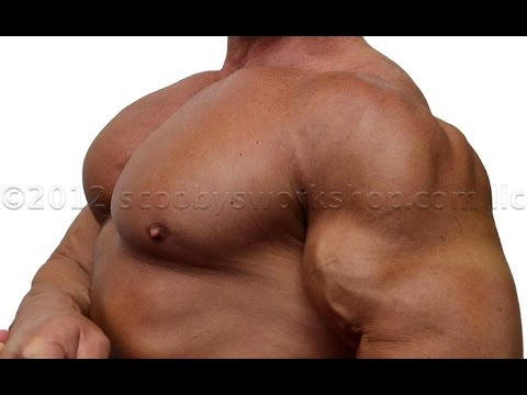 pecs - http://scoobysworkshop.com/10-secrets-for-huge-pecs/ Many people tell me my pecs are WAY too huge. Many people comment that I should do legs instead of chest...