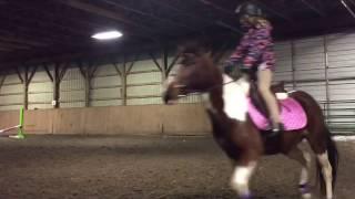 Video Bella's First Ride! Part 1! download in MP3, 3GP, MP4, WEBM, AVI, FLV Mei 2017