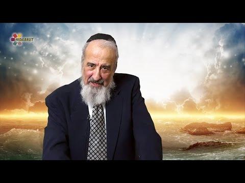Receiving of the Torah - Rabbi Yosef Chaim Schwab