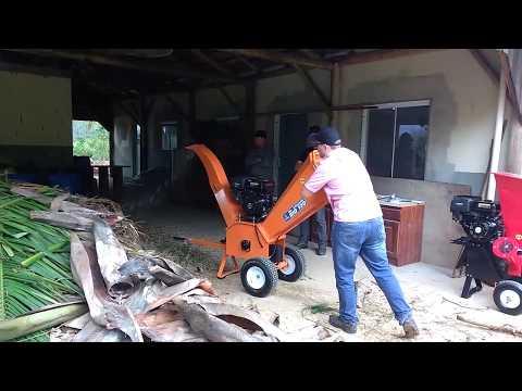 Triturador de galhos Lippel - Bio 110 - Triturando galhos de Eucalipto e Pinus