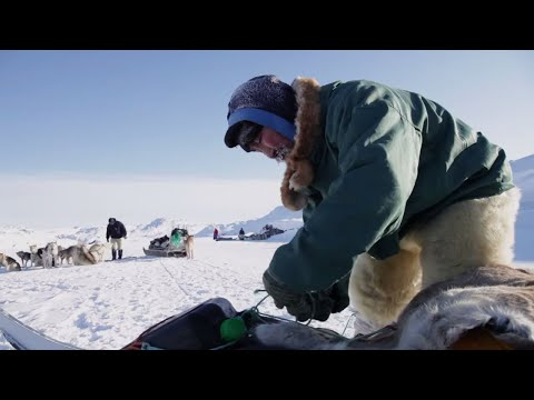 Go dogsledding in Greenland!