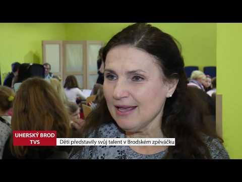 TVS: Deník TVS 22. 3. 2019