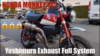 6. Honda Monkey 125 Yoshimura Exhaust Comparison VS Stock Exhaust