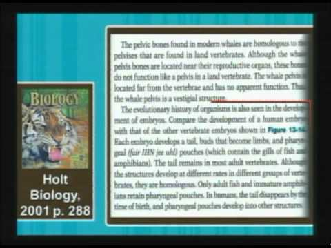 Other Evidences Presented in Textbooks as Proof for Evolution   Christian Apologetics Week 12