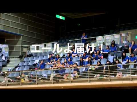平成26年度体育祭