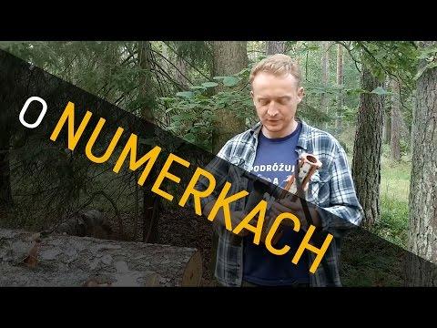 lesne-numerki-co-oznaczaja