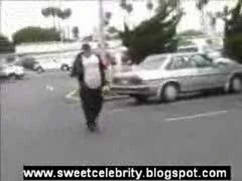 Modern Bird steals burger