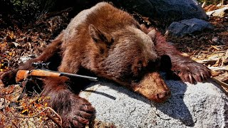 Video Bear Hunting 2016 - California - 7mm mag - Black Bear MP3, 3GP, MP4, WEBM, AVI, FLV Mei 2017