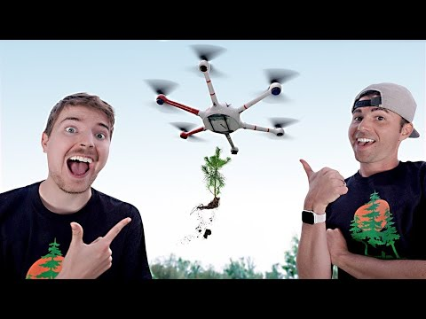Using Drones to Plant 20 000 000 Trees