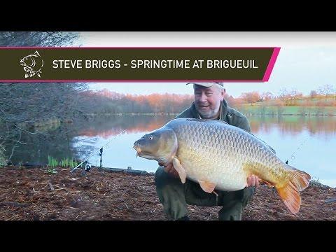 Steve Briggs - Springtime at Brigueuil