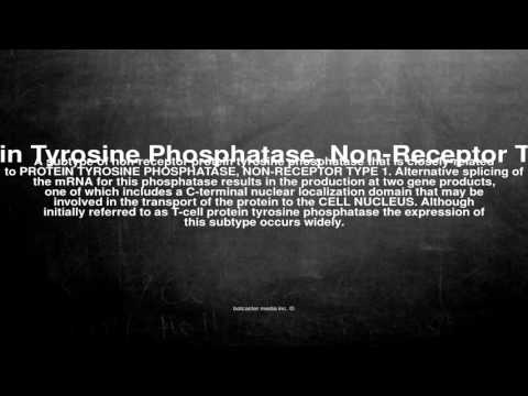 Medical vocabulary: What does Protein Tyrosine Phosphatase, Non-Receptor Type 2 mean
