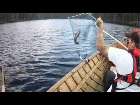 kauris ja kalat the notebook elokuva