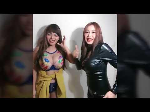 Video Pamela Duo Serigala adu dada download in MP3, 3GP, MP4, WEBM, AVI, FLV January 2017