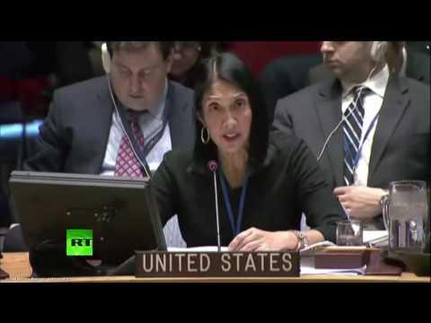 Заседание Совбеза ООН по Сирии (видео)