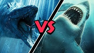 Video Mosasaurus VS Megalodon – (Who Would Win?) MP3, 3GP, MP4, WEBM, AVI, FLV Juli 2019