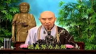 Kinh Vô Luợng Thọ (1998) tập 135&136 - Pháp sư Tịnh Không