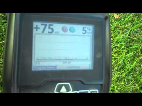 Metal detecting with a Whites V3i and an AT Pro