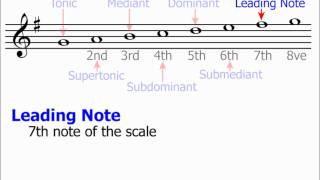 Technical Names Of Scale Notes (Music Theory)