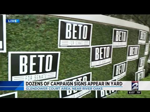 Dozens of campaign signs appear in yard