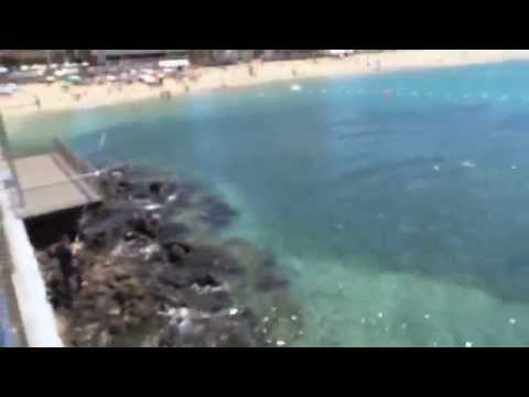 Playa Las Canteras Vacaciones Semana Santa 2015