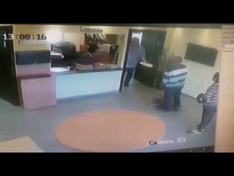 כתב אישום נגד גבר שבעט בראשה של כלבתו הפצועה