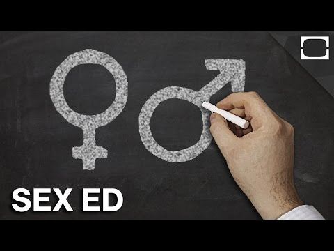 Which Countries Have The Best Sex Education?