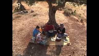فيلم تثقيفي حول فقر الدم
