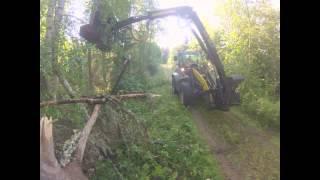 <h5>Umpeen kasvaneen metsätien raivaus</h5>